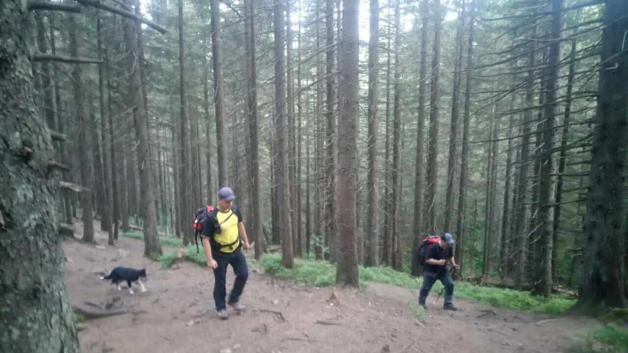 Хлопчик відстав від групи туристів під час підйому на гору Говерла